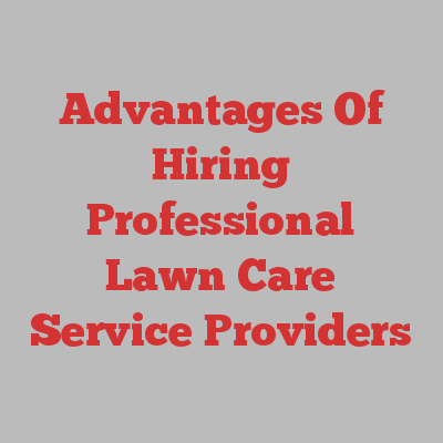 Advantages Of Hiring Professional Lawn Care Service Providers